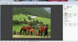 Demo ukázkaImage Resize Guide Lite