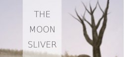 The Moon Silver