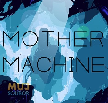 Mother Machine