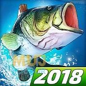 Rybaření zdarma online